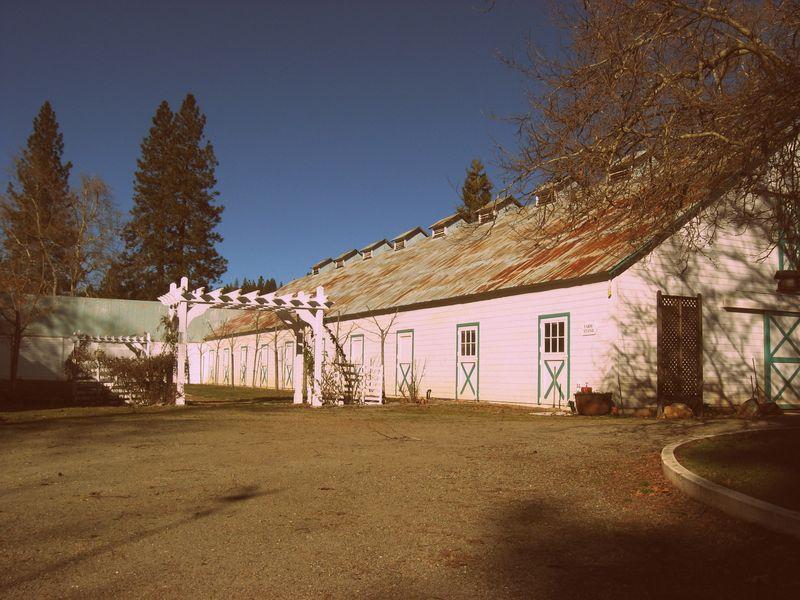 Loma Rica Ranch 008-001